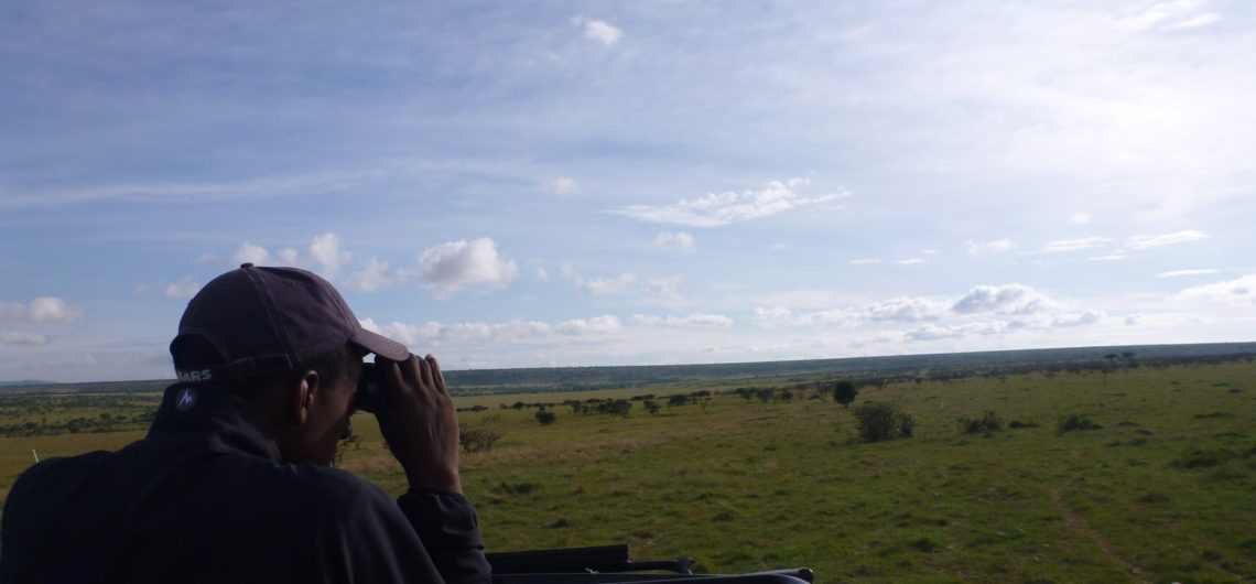 Searching for wildlife on safari